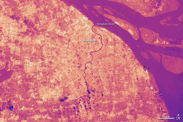 Satellite view of the 'urban heat island' effect during the record heat wave in Shanghai, 13 August 2013. Chinese officials declared a weather emergency, warning residents to limit time outdoors. It is the first time the country has issued a weather warning for heat. Photo: Jesse Allen / NASA Earth Observatory