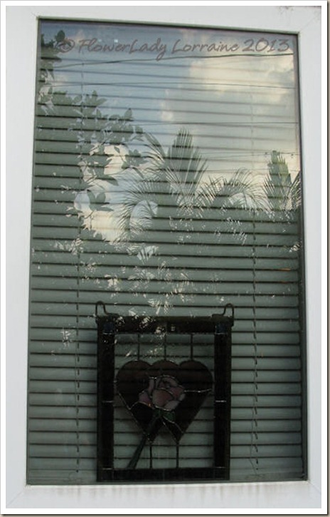 02-06-liv-window