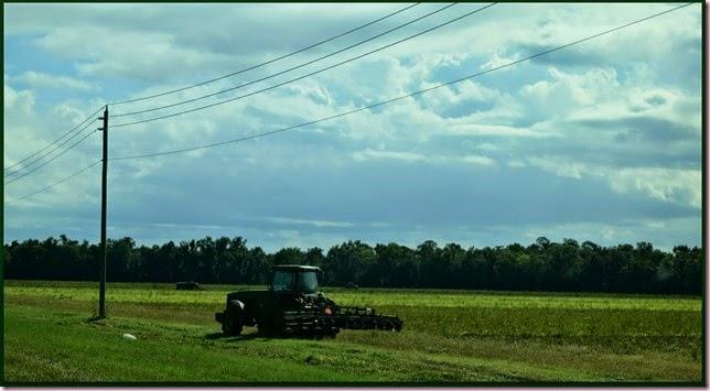 tractorIMG_9164