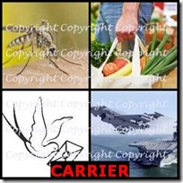 CARRIER- 4 Pics 1 Word Answers 3 Letters