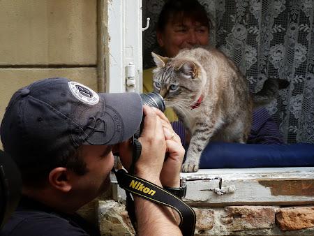 16. Pisica din geam.JPG