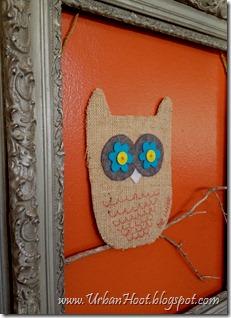 owl19