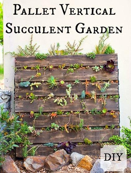 Pallet succulent garden