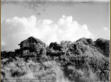A hut at the top of Merbabu (unknown photographer, 1910, courtesy TropenMuseum)