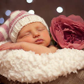 Cosy Poppy by Chinchilla  Photography - Babies & Children Babies