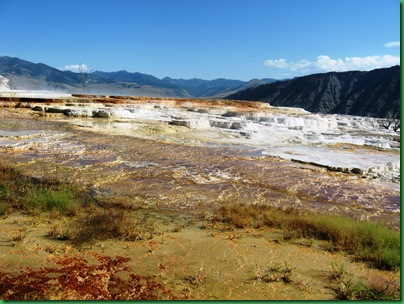 Mammoth Hot Springs Terraces (151)