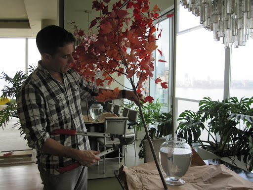 Tom will cut the branch so the leaves will begin at the top of the jar he will be using to place the arrangement in.