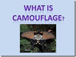 Camouflagepower