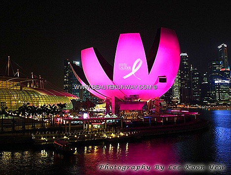 ESTEE LAUDER 2012 BREAST CANCER AWARENESS 20th ANNIVERSARY CAMPAIGN CELEBRITIES LUXURY CHARITY AUCTION FUNDRAISING SINGAPORE Elizabeth Hurley, Estée Lauder' spokesperson  Global Landmark Pink Illumination Art Science Museum