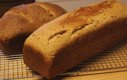 sprouted-spelt-bread_2432