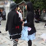 gothic lolita girls in harajuku in Harajuku, Tokyo, Japan