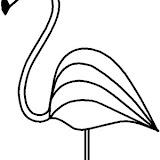 col-zoo-flamingo.jpg
