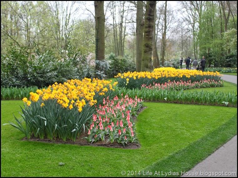 Keukenhof Gardens 23