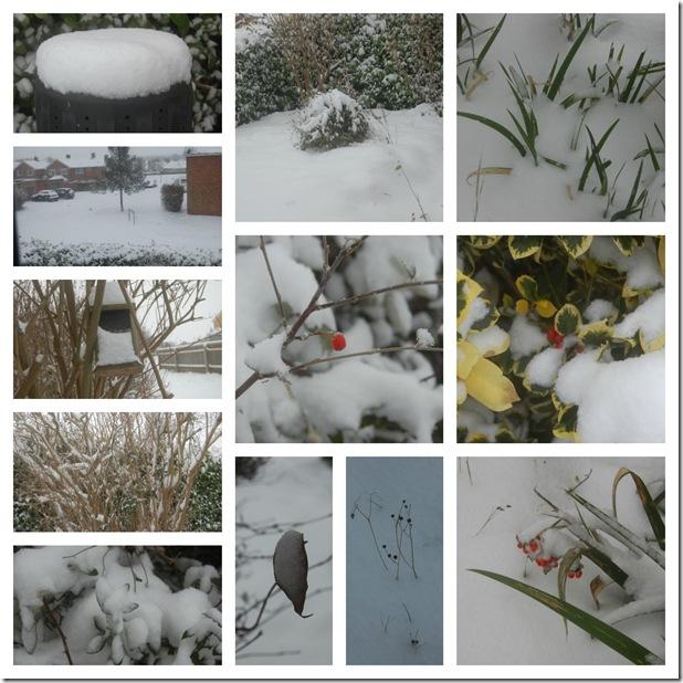 snow.picmonkey