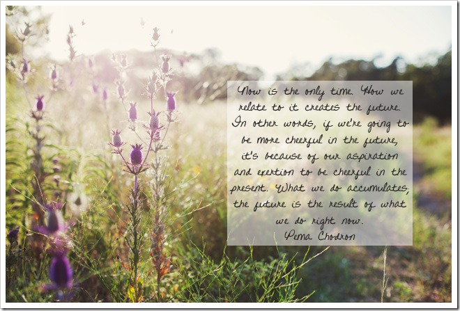 quote by Pema Chodron