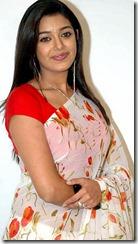 Chaya_Singh_Saree_hot1