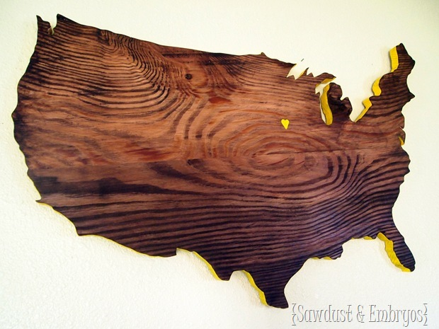 United States out of Wood {Sawdust and Embryos}