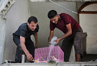 Upon their return, Palestinians pour water to save the family birds after finding them alive at the family house destroyed by Israeli strikes, while visiting the area during a 12-hour cease-fire in Beit Hanoun, northern Gaza Strip, Saturday, July 26, 2014. Thousands of Gaza residents who had fled Israel-Hamas fighting streamed back to devastated border areas during a lull Saturday to find large-scale destruction: scores of homes were pulverized, wreckage blocked roads and power cables dangled in the streets. (AP Photo/Lefteris Pitarakis)