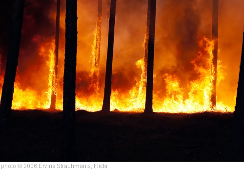 'Forest fire' photo (c) 2006, Ervins Strauhmanis - license: http://creativecommons.org/licenses/by/2.0/
