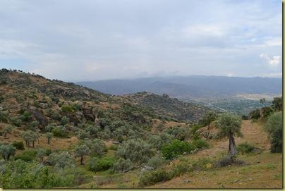 Alinda view