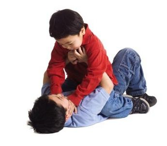 Article new ehow images a08 4d 1l activities sibling rivalry 800x800