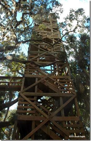 Myakka tower 145
