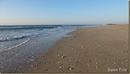 sunrise walk edisto_057