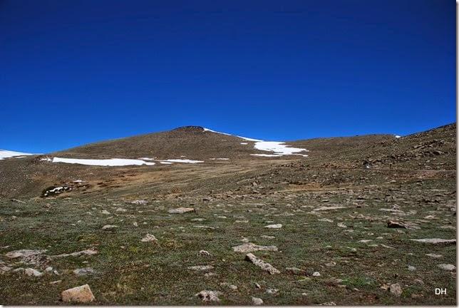 06-19-14 A Trail Ridge Road RMNP (95)