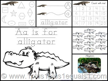 Aa Alligator Extras