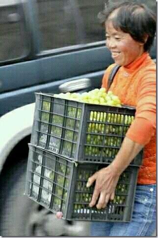 china_budoutorak02