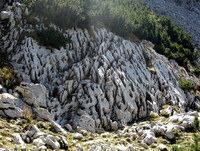Škraplje na planino Koren