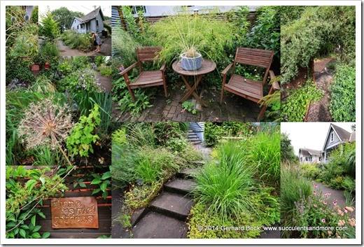 140713 Rhone Street Gardens