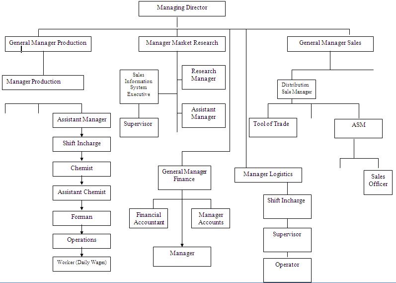 organizational chart of pepsi cola company Organizational chart of pepsi cola company northwestern university college of business education laoag city strategic management environmental analysis: pepsi.