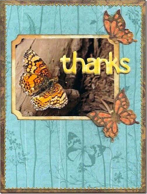 Thanks20150131