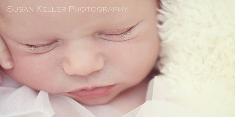 orange county newborn photographer 4