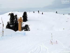 5-6226-Zillertal-Arena-ski_rw.jpg