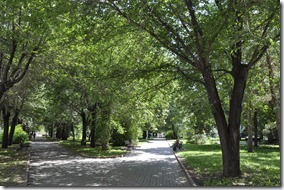 018-volgograd- parc public