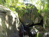 The water source on the trail to Bukit Jempol (Bukit Serelo) (Dan Quinn, November 2013)