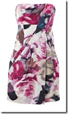 Karen Millen Rose Print Dress