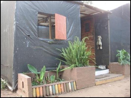 AFRIKANER SQUATTER CAMP KRUGERSDORP SHANTY FLOWER POTS MAY 2012