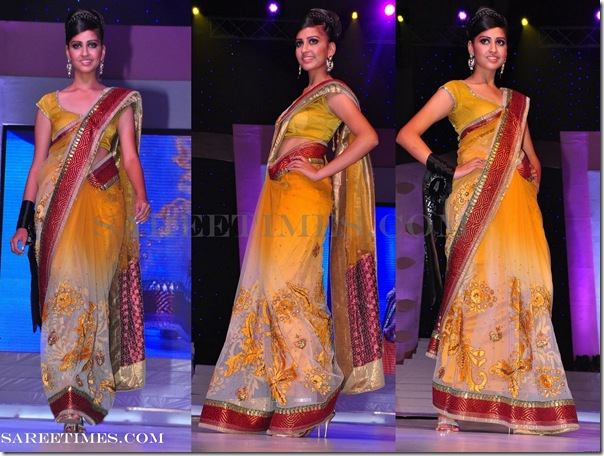 Embroidery_Designer_Saree