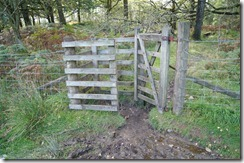 Walls and gates--Hill top walk