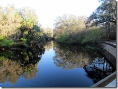 Hillsborough River reflections
