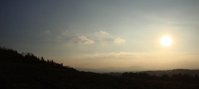 hrib Mestni Vrh