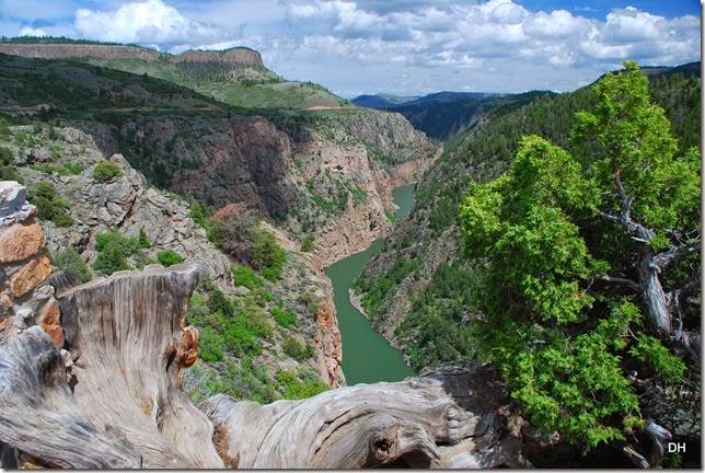 06-08-14 A Blue Mesa Dam Area (93)