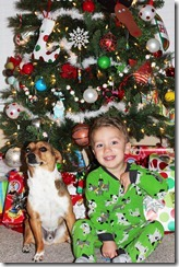 Christmas 2011 - A 291b