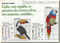 magestosos tucanos e araras (3)