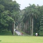 Shri-Lanka (26).jpg