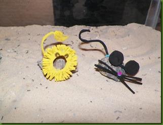 Shelldon and Beachnut
