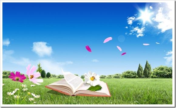 Lectura semana don dividendo 22-2013